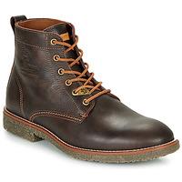 Zapatos Hombre Botas de caña baja Panama Jack GLASGOW Marrón