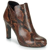 Zapatos Mujer Botines Tamaris LYCORIS Marrón / Serpiente