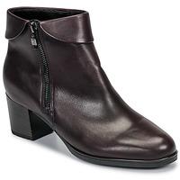 Zapatos Mujer Botines Ara 16913-67 Marrón