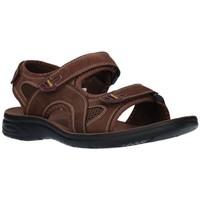 Zapatos Hombre Sandalias de deporte Paredes VP18142 MA Hombre Marron marron