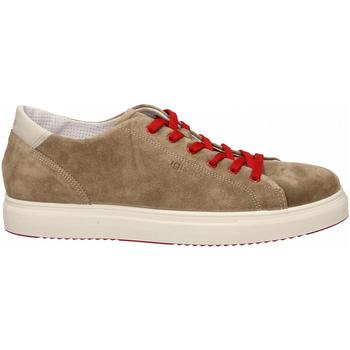 Zapatos Hombre Zapatillas bajas Igi&co USH 31327 tortora
