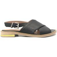 Zapatos Mujer Sandalias Ngy sandales SONIA Sauvage Noir Negro