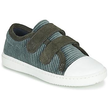 Zapatos Niños Zapatillas bajas Citrouille et Compagnie LILINO Gris
