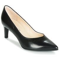 Zapatos Mujer Zapatos de tacón Peter Kaiser NURA Negro