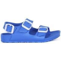 Zapatos Niño Zuecos (Mules) Birkenstock Milano Kids Eva Azul