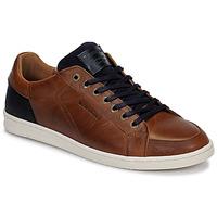 Zapatos Hombre Zapatillas bajas Redskins OSTAN Cognac / Marino