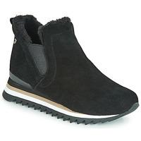 Zapatos Mujer Zapatillas altas Gioseppo ECKERO Negro