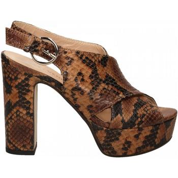 Zapatos Mujer Zapatos de tacón Les Venues LINDY diamant-cognac