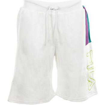 textil Hombre Shorts / Bermudas Fila Ajay Short