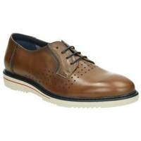 Zapatos Hombre Derbie & Richelieu Tolino Zapatos  90315 caballero marron Marron