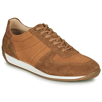 Zapatos Hombre Zapatillas bajas Casual Attitude LARY Camel