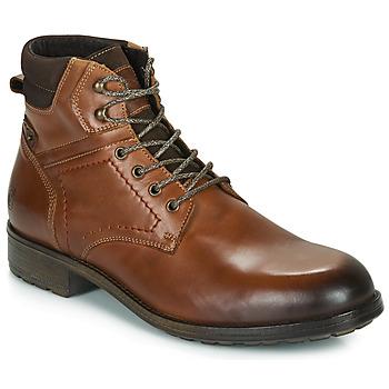 Zapatos Hombre Botas de caña baja Casual Attitude LULLY Cognac