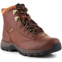 Zapatos Mujer Botas de caña baja Ariat Berwick lace GTX Insulated 10016298 marrón
