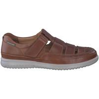 Zapatos Hombre Sandalias Mephisto TAREK Marrón