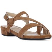 Zapatos Mujer Sandalias Frau CAMOSCIO SELLA Marrone