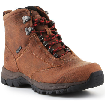 Zapatos Mujer Senderismo Ariat Trekking shoes  Berwick Lace Gtx Insulated 10016229 marrón