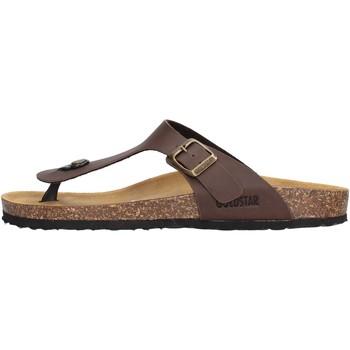 Zapatos Hombre Chanclas Gold Star - Infradito marrone 1830 MARRONE