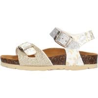 Zapatos Niña Sandalias Gold Star - Sandalo platino 1846L