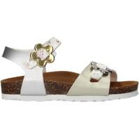 Zapatos Niña Sandalias Gold Star - Sandalo argento 1846VF ARGENTO