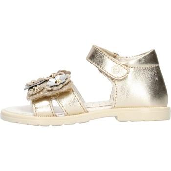 Zapatos Niña Sandalias Falcotto - Sandalo platino PUPPY PLATINO