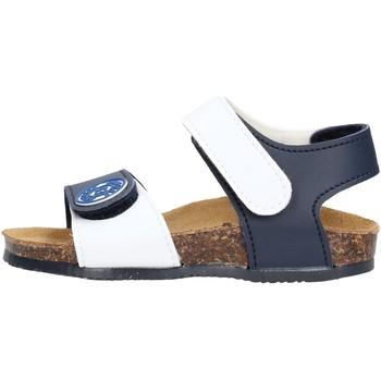 Zapatos Niño Sandalias Gold Star - Sandalo blu/rosso 8852J BLU