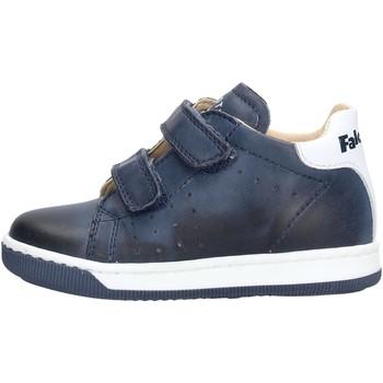 Zapatos Niño Zapatillas bajas Falcotto - Polacchino v blu ADAM VL