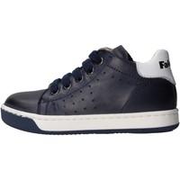Zapatos Niño Zapatillas bajas Falcotto - Polacchino 9101 blu SMITH