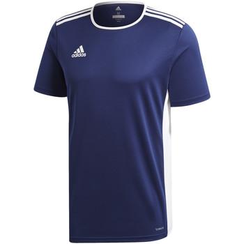 textil Niño camisetas manga corta adidas Originals Entrada 18 t-shirt blu in poliestere da ragazzo CF1036 BLU