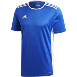 textil Niño camisetas manga corta adidas Originals - T-shirt azzurro CF1037 AZZURRO
