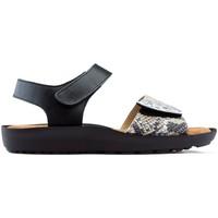 Zapatos Mujer Sandalias Dtorres S  BLANES 06 PLATA