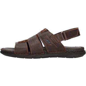 Zapatos Hombre Sandalias Valleverde - Sandalo testa di moro 20831 MARRONE