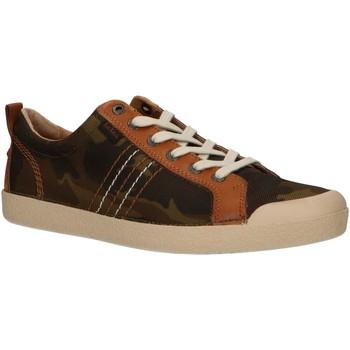 Zapatos Hombre Zapatillas bajas Kickers 471063-60 TRIDENT Verde