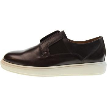 Zapatos Hombre Zapatillas bajas Antica Cuoieria  Otros