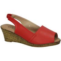 Zapatos Mujer Sandalias H.f Shoes Alpargatas rojas Rojo