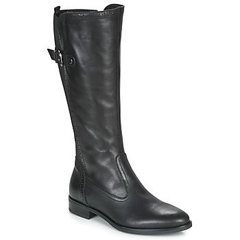 Zapatos Mujer Botas urbanas André MAELLE Negro