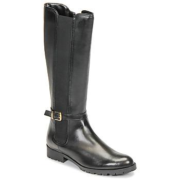 Zapatos Mujer Botas urbanas André ELODIE Negro