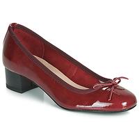 Zapatos Mujer Bailarinas-manoletinas André POEME Rojo