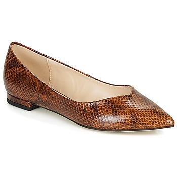 Zapatos Mujer Bailarinas-manoletinas André LISERON Marrón
