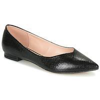 Zapatos Mujer Bailarinas-manoletinas André LISERON Negro / Estampado