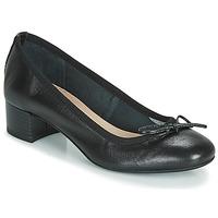 Zapatos Mujer Bailarinas-manoletinas André POEME Negro