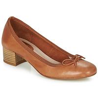 Zapatos Mujer Bailarinas-manoletinas André POEME Camel
