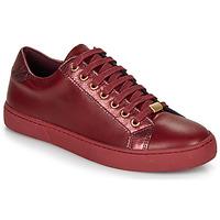 Zapatos Mujer Zapatillas bajas André BERKELEY Burdeo