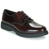 Zapatos Hombre Derbie André CHAD Burdeo