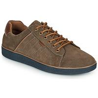 Zapatos Hombre Zapatillas bajas André ELTON Kaki
