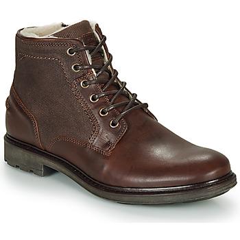 Zapatos Hombre Botas de caña baja André TIGNES Marrón