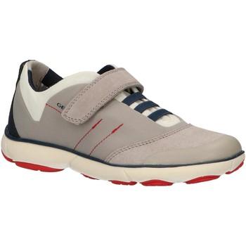 Zapatos Niños Multideporte Geox J921TA 01122 J NEBULA Gris