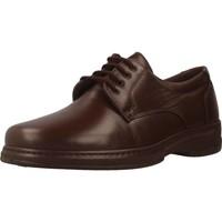 Zapatos Hombre Derbie Pinoso's 5975 H Marron