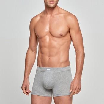 Ropa interior Hombre Boxer Impetus Calzoncillos Boxer  Cotton Strech Liso Gris