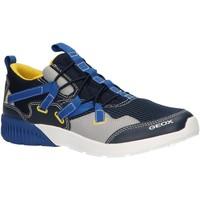 Zapatos Niños Multideporte Geox J926PA 014BU J SVETH Azul