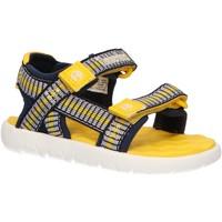Zapatos Niños Sandalias Timberland A1Y9X PERKINS Azul